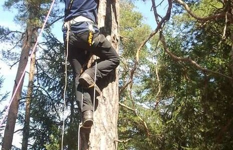 Things You Should Know About Rope Ladder